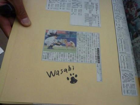 web-P1170822.JPG