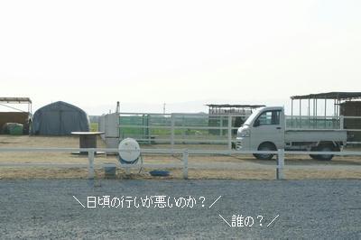 fdc135fa.jpeg