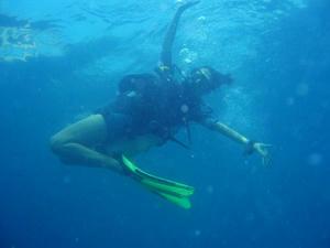 diving10.jpg