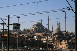 turkey31.jpg