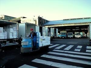 tsukiji06.jpg