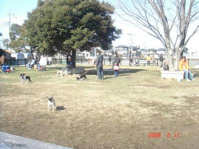 DSC01462.JPGppc.jpg