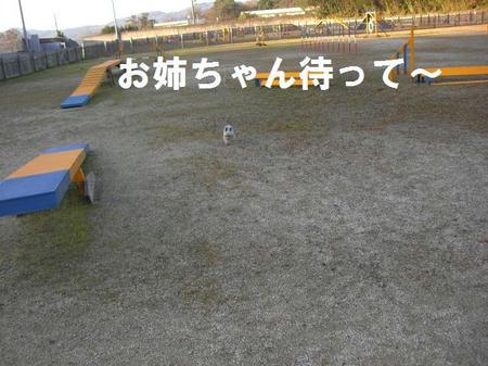 df346903.JPG