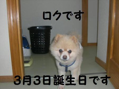 1c455924.JPG