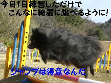 CIMG5211.JPG