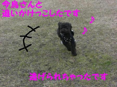 CIMG5404.JPG