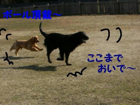 CIMG5463.JPG