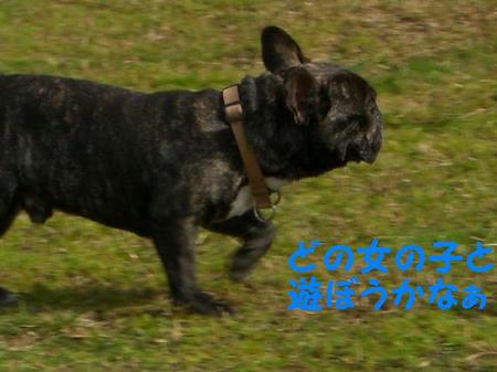 CIMG5725.JPG