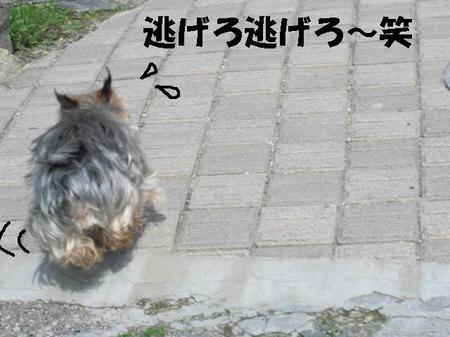 CIMG0448.JPG