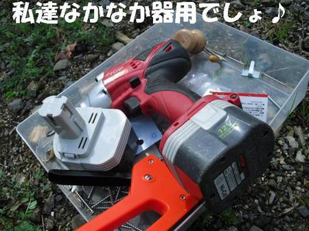 CIMG0598.JPG