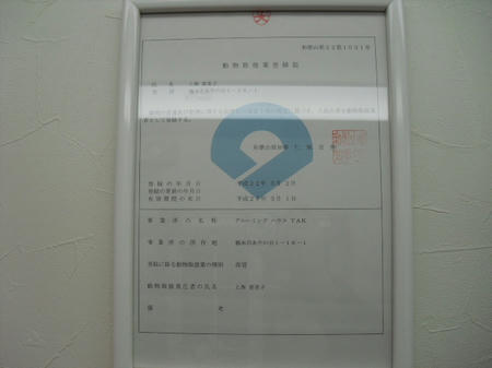 CIMG1082.JPG