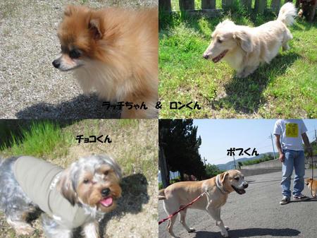 fb720039.JPG
