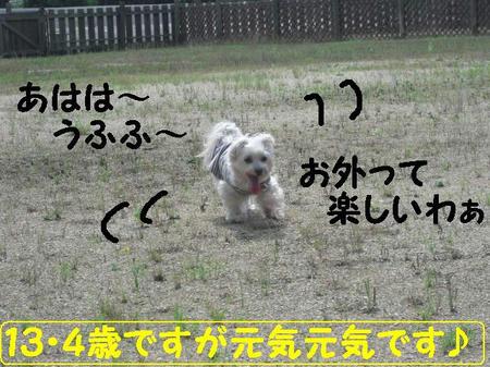 CIMG7814.JPG