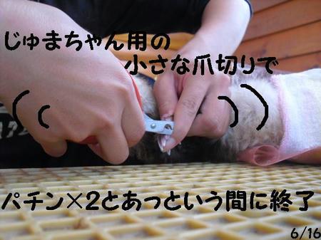 CIMG7418.JPG