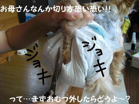 CIMG0125.JPG