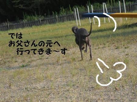 CIMG1045.JPG