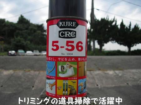 CIMG3619.JPG