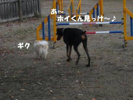 b626d325.jpg