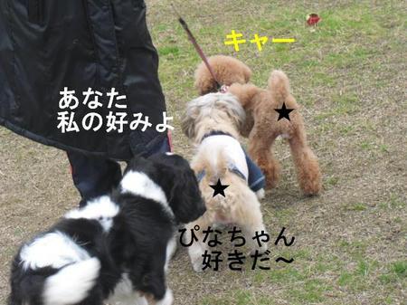 cfed69ea.jpg