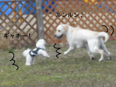 2d7ccea4.jpg