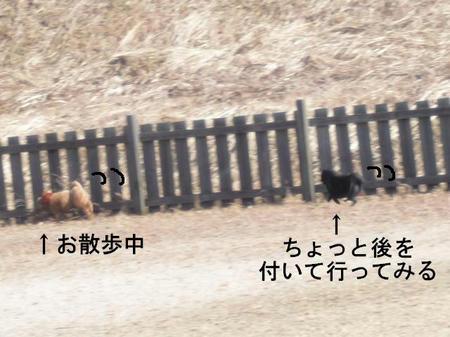 f1d39600.jpg