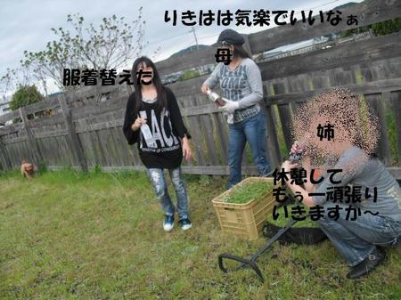 bb8c1dfe.jpg