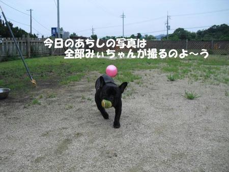 d130c337.jpg