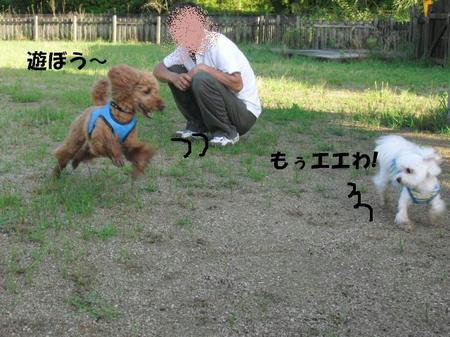 4b9a6902.jpg
