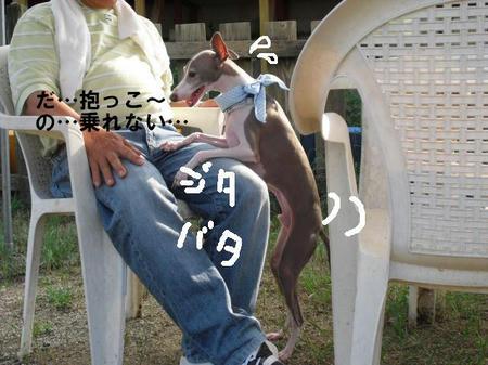 b0de922b.jpg