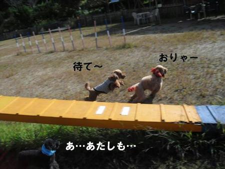 f9b67896.jpg