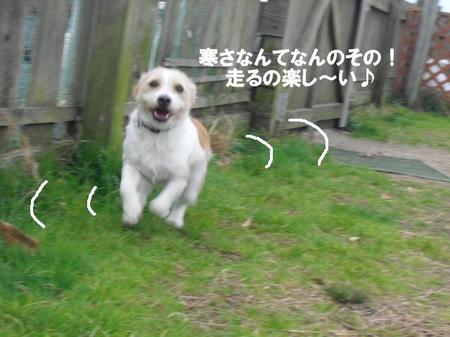 f6c670a0.jpg