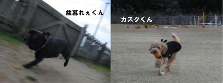 7a901787.JPG