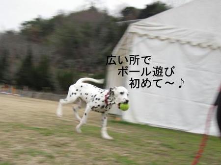 57a703ef.jpg