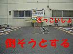 07062602_002.jpg
