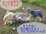 07090716.CIMG7460-1.JPG