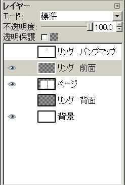 081031Ring19.jpg