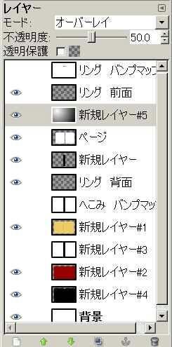 081031Ring32.jpg