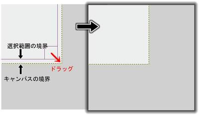 081209dice17.jpg