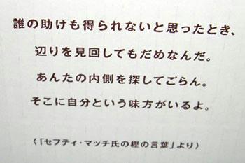 08_0563.jpg
