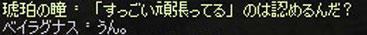 2012_105.jpg