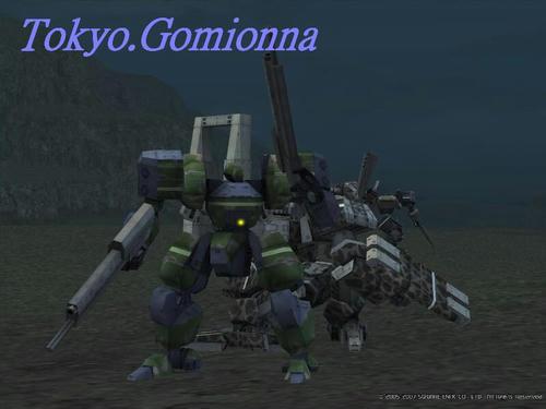 Tokyo.Gomionna.JPG