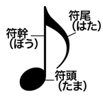 250px-Parts_of_musical_note.svg.png