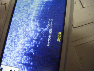 DSCF2103.JPG