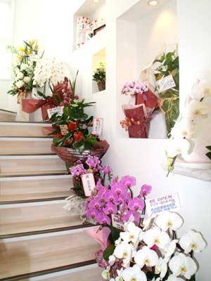 階段にも花、花、花!