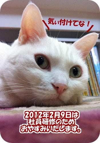 2012年2月9日(木)はお休みいたします
