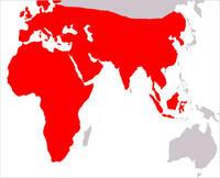 igel_map.jpg