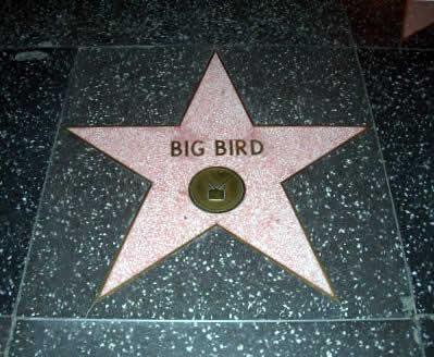Walk of Fame bigbird