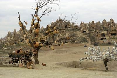 岩窟群の前の願いの木