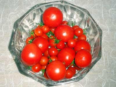 10月に収穫した庭のトマト