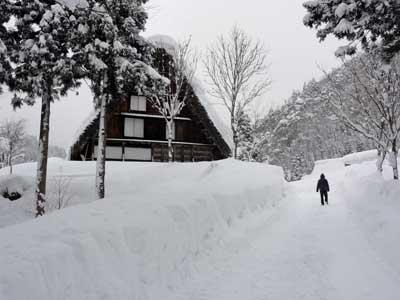 これが豪雪地帯の風景